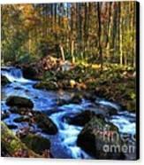 A Smoky Mountain Autumn Canvas Print by Mel Steinhauer