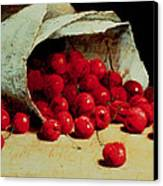 A Spilled Bag Of Cherries Canvas Print by Antoine Vollon