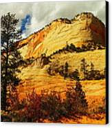 A Tree And Orange Hill Canvas Print by Jeff Swan