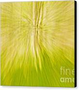 Abstract Nature  Canvas Print by Gry Thunes
