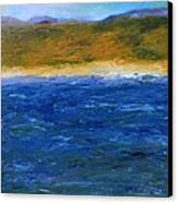 Abstract Shoreline Canvas Print by Michelle Calkins