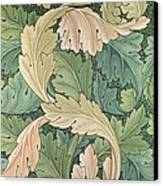 Acanthus Wallpaper Design Canvas Print by William Morris