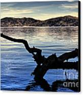 Adrift Reflection Canvas Print by Cheryl Young