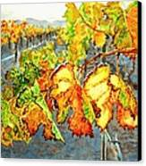 After The Harvest Canvas Print by Karen Ilari