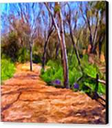 Afternoon Walk Canvas Print by Michael Pickett