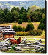 Along The Wilderness Trail Canvas Print by Karen Wiles