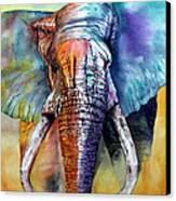 Alpha Canvas Print by Maria Barry