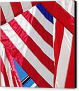 American Flags Canvas Print by Nathan Griffith