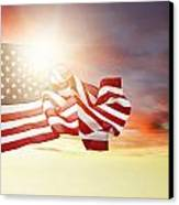 American Pride Canvas Print by Les Cunliffe