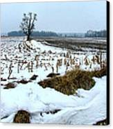 Amish Field In Winter Canvas Print by Julie Dant