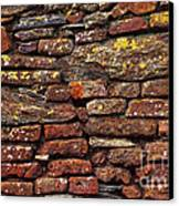 Ancient Wall Canvas Print by Carlos Caetano