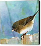And Down I Go Canvas Print by Betty LaRue