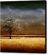 And The Rains Came Canvas Print by Holly Kempe