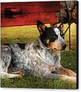 Animal - Dog - Always Faithful Canvas Print by Mike Savad