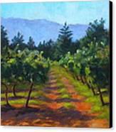 Annadel Shadows Canvas Print by Joyce Delario