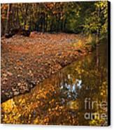 Arizona Autumn Reflections Canvas Print by Mike  Dawson