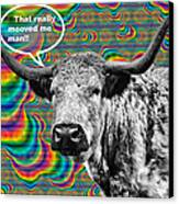 Arty Coo Really Mooved Canvas Print by John Farnan