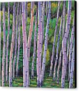 Aspen Enclave Canvas Print by Johnathan Harris