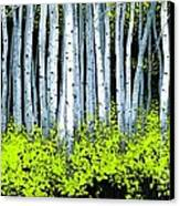 Aspen II Canvas Print by Michael Swanson