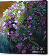 Asters Canvas Print by Melody Cleary