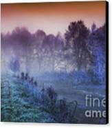 Aurora Canvas Print by Mo T
