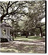 Austin Texas Southern Garden - Luther Fine Art Canvas Print by Luther  Fine  Art