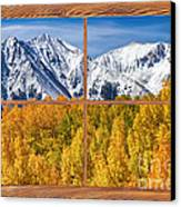 Autumn Aspen Tree Forest Barn Wood Picture Window Frame View Canvas Print by James BO  Insogna
