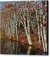 Autumn Blue Canvas Print by Karol Livote