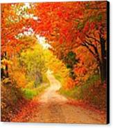 Autumn Cameo 2 Canvas Print by Terri Gostola