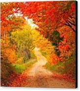 Autumn Cameo Road Canvas Print by Terri Gostola