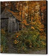 Autumn Canopy Canvas Print by Robin-lee Vieira