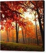 Autumn Canopy Canvas Print by Terri Gostola