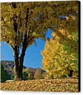 Autumn Colors Canvas Print by Brian Jannsen