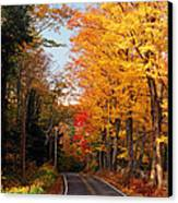 Autumn Country Road Canvas Print by Joann Vitali