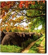 Autumn Hay Bales Blue Ridge Mountains II Canvas Print by Dan Carmichael