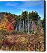 Autumn In The Adirondacks Canvas Print by David Patterson