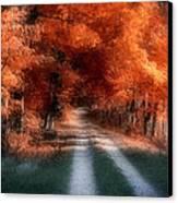 Autumn Lane Canvas Print by Tom Mc Nemar