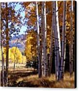 Autumn Paint Chama New Mexico Canvas Print by Kurt Van Wagner