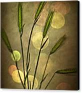 Autumn Party Canvas Print by Jan Bickerton