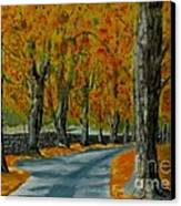 Autumn Pathway Canvas Print by Anthony Dunphy