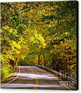 Autumn Road Canvas Print by Carol Groenen