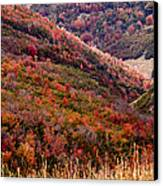 Autumn Canvas Print by Rona Black