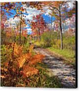 Autumn Splendor Canvas Print by Bill Wakeley
