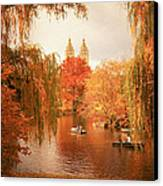 Autumn Trees - Central Park - New York City Canvas Print by Vivienne Gucwa