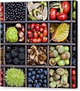 Autumnal Harvest Canvas Print by Tim Gainey