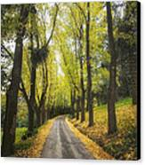 Autumns Day Canvas Print by Kim Andelkovic