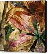 Awed II Canvas Print by Yanni Theodorou
