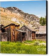 Bachelors Row Canvas Print by Sue Smith