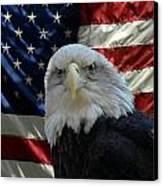 Bald Eagle 321 Canvas Print by Joyce StJames