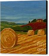 Field Of Golden Hay Canvas Print by Anthony Dunphy
